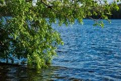 卡累利阿人的湖 免版税库存图片