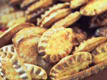 卡累利阿人的肉馅饼 库存图片