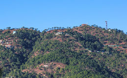 卡绍利,喜马偕尔邦,印度 免版税库存照片