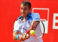 卢克斯Rosol ATP网球员 库存照片