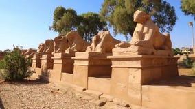 卢克索神庙充分的HD录影 股票视频