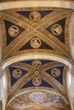 卢卡大教堂内部看法的天花板  Cattedrale di圣马蒂诺 托斯卡纳 意大利 库存图片
