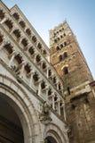 卢卡大教堂细节  免版税图库摄影