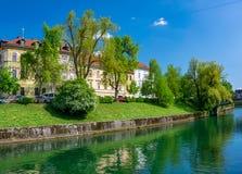 卢布尔雅尼察河河的堤防风景看法在卢布尔雅那,斯洛文尼亚 免版税图库摄影
