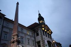 卢布尔雅那斯洛文尼亚市夜 库存图片