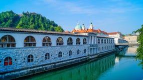 卢布尔雅那河沿3 免版税图库摄影