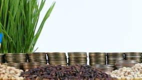 卢旺达沙文主义情绪与堆金钱硬币和堆麦子 股票录像