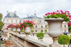 卢森堡从事园艺,巴黎 库存照片