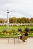 卢森堡从事园艺,巴黎 库存图片
