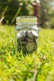 卢比在瓶子的硬币金钱在绿草自然背景 图库摄影