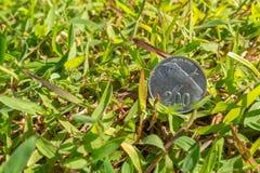 卢比在绿草的硬币金钱 免版税图库摄影