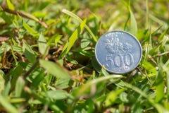 卢比在绿草的硬币金钱 图库摄影