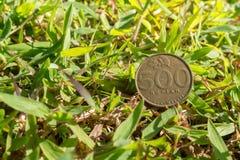 卢比在绿草的硬币金钱 免版税库存图片