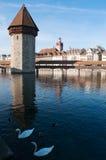 卢赛恩,卢塞恩州,中央瑞士,欧洲的首都 免版税库存图片