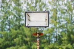 卤素在室外公园的灯岗位 免版税库存图片