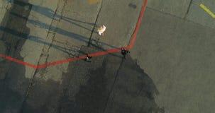 卫兵伴随一名VIP妇女到一架私有直升机 在视图之上 股票视频