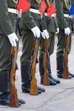 卫兵荣誉称号 库存照片