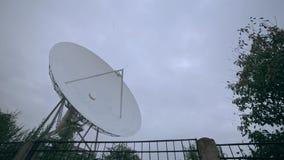 卫星列阵的轻率冒险与树的 影视素材