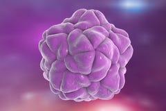 卫星烟草斑纹病毒 向量例证