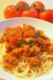 卫生盘的意大利面食 免版税库存图片
