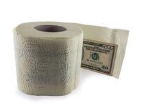 卫生纸和金钱 免版税库存照片