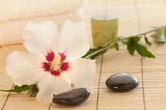 卫生间花玫瑰色莎朗温泉白色 库存照片
