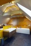 卫生间设计内部现代 库存例证