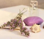 卫生间静物画-一块肥皂和毛巾与美味的海壳和淡紫色 图库摄影