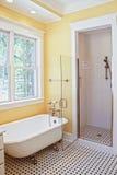 卫生间古典样式 库存照片