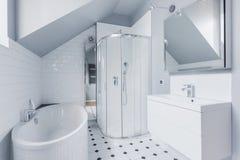 卫生间在有阵雨和浴的经典style.luxury卫生间里 免版税库存图片
