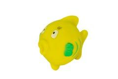 卫生间的一点黄色橡胶鱼 图库摄影