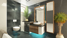 卫生间设计 库存照片