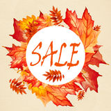 印刷品的汇集美丽的五颜六色的秋叶 库存图片