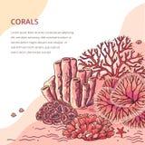 印刷品的美丽的珊瑚卡片 皇族释放例证