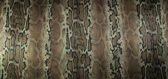 印刷品织品纹理镶边背景的蛇 库存照片