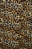 印刷品织品纹理镶边背景的豹子 图库摄影