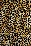 印刷品织品纹理镶边背景的豹子 库存图片