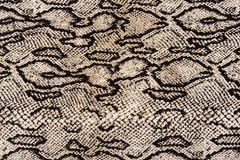 印刷品织品镶边蛇皮革纹理  图库摄影