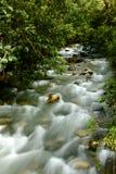 印加人河线索 免版税库存图片