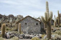 印加瓦西峰海岛在撒拉族de Uyuni,玻利维亚 免版税库存照片