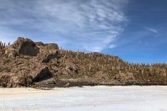 印加瓦西峰海岛是土地多小山和岩石露出用许多巨型仙人掌,位于在撒拉族de Uyuni,玻利维亚中间 库存图片