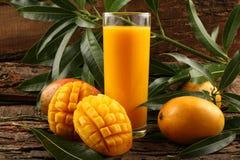 印地安人亚尔方索芒果汁 库存图片