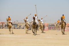 印地安人演奏骆驼马球在沙漠节日在Jaisalmer,拉贾斯坦,印度 免版税库存照片