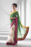 印地安传统莎丽服穿戴 免版税库存图片