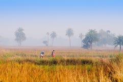 印地安农村男人和妇女 免版税库存照片