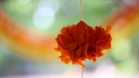 印地安印度婚礼装饰 股票视频