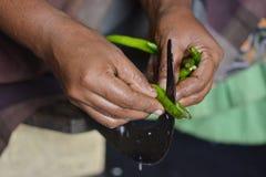 印地安厨房 免版税图库摄影