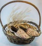 印地安在白色的鞋子国王柳条棕色篮子 免版税库存图片