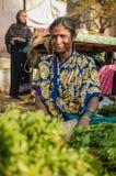 印地安女性 库存图片