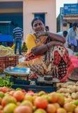 印地安女性 库存照片